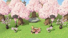 18 Acnh Cherry Blossom Ideas Animal Crossing Game New Animal Crossing Animal Crossing