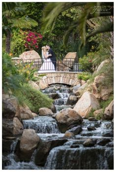 Bride and Groom | Grand Tradition Estate Wedding | Elegant Wedding | Black Tie Wedding | Southern California Outdoor Wedding Venue | San Diego Wedding Photographers | Jessica Van of France Photographers