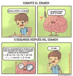 El cerebro de los estudiantes trabaja de formas extrañas, pero este dibujo parece representar de manera correcta como trabaja durante el exa...