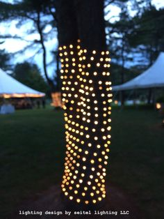Tree Trunk Wrap Net Lights 6 Feet On Brown Wire Wedding Lights In