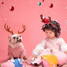 Christmas Decor Accessories for Bulldogs Reindeer Costume, Reindeer Headband, Bulldog Rescue, Rescue Dogs, Costume Hats, Christmas Costumes, Medium Dogs, Happy Dogs, Dog Friends