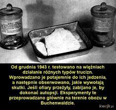 History, Historia