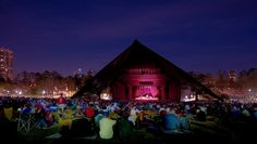 This summer, I plan to go to as many performances as possible at the Miller Outdoor Theater. - Alison - #HouBList - MyHoustonBucketList.com