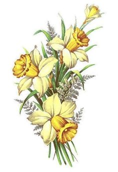 Yellow Daffodil Jonquil Flower Floral Select-A-Size Waterslide Ceramic Decals Yellow Daffodil Jonquil Flower Floral Select-A-Size Waterslide Ceramic Decals Bx Yellow Daffodil Jonquil Flower Floral Select-A-Size… - Dream Tattoos, Future Tattoos, Butterfly Flowers, Flower Art, Tribal Scorpion Tattoo, American Traditional Rose, Bluebird Tattoo, Tattoo Bird, Easy Pencil Drawings