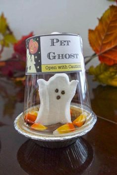Mini pumpkin pie with marshmellow ghost & candy corns. Too cute.