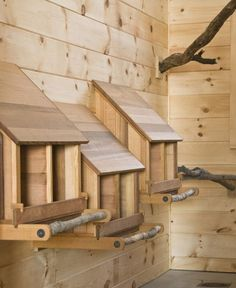 DIY Awesome chicken coop plans, cool homesteading projects to make! | http://pioneersettler.com/chicken-coop-designs-and-ideas/