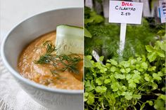 NYT Cooking: This creamy puree can be served hot or cold, so it makes a great summer soup. Roast Recipes, Soup Recipes, Vegetarian Recipes, Cooking Recipes, Apple Soup, Carrot Soup, Dill Soup Recipe, Poblano Soup, Creamy Corn