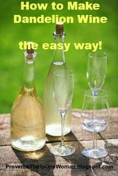 Check out our favorite dandelion wine recipe. Dandelion wine making is an amazing process that turns a prolific wild plant into a true elixir. We'll show you exactly how to make dandelion wine here! Homemade Wine Recipes, Homemade Alcohol, Homemade Liquor, Wine And Liquor, Wine And Beer, Kombucha, Cocktails, Alcoholic Drinks, Beverages