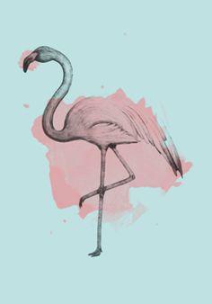 Poster Flamingo | Colab55 | Tamanhos: A4, A3, A2