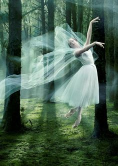 The most dramatic and beautiful of ballets Giselle – The Royal New Zealand Ballet's major new production