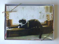Feline Art Cards Cards Dozen Assorted by PortraitsOfAnimals on Etsy.