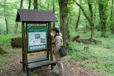 Kudy z nudy - Naučná stezka Lužní les u Břeclavi