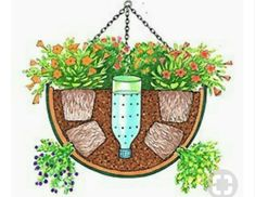 self watering hanging basket - Need to try this for the hanging baskets on the porch. self watering hanging basket - Need to try this for the hanging baskets on the porch. Container Flowers, Container Plants, Container Gardening, Indoor Gardening, Container Water Gardens, Container Design, Gardening Vegetables, Flower Gardening, Vegetable Gardening