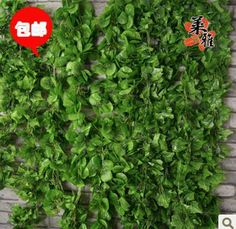 3packs(15pcs) /lot artificial vine rattails decoration air conditioning silk parthenocissus/Begonia leaf free shipping 2.2M L-inDecorative F...