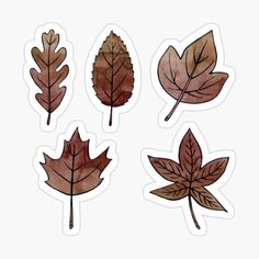 Brown Autumn Leaves Sticker Sheet by on Redbubble Bubble Stickers, Cool Stickers, Laptop Stickers, Journal Stickers, Printable Planner Stickers, Bullet Journal Art, Aesthetic Stickers, Autumn Leaves, Autumn Fall