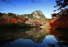 10 Best Autumn-Leaf Viewing Spots in Kyushu – Saga and Nagasaki !!  Kyushu area also has way too many autumn-leaf viewing spots that we don't have enough space to introduce them all to you here, so let us show you some of the best spots in Saga and Nagasaki.