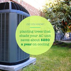 Tip: Plant trees in areas that shade your AC unit to save big!