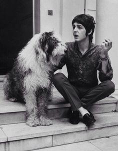 Inmortalizado este momento de Paul McCartney con su perrita Martha #doglover