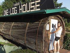 #интересное  Микро дом в дереве (4 фото)   Необычный милый уютный домик в стволе дерева.       далее по ссылке http://playserver.net/?p=106975