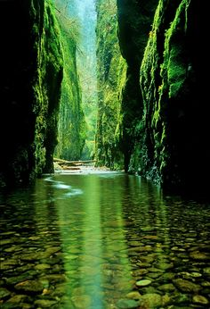 Serene river in a green valley.