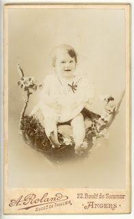 Boutique-Photos:  CDV Portrait Enfant. Bébé dans un nid Photographi...