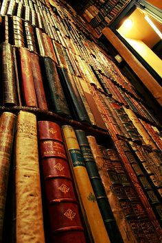 Rows and rows, stacks upon stacks, all the way to the ceiling, over the door, so many books, endless books, yes!