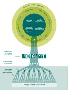 How to present an organisation and its stakeholders in a clear and attractive way? That's what double-id developed for CEPF (Confédération Européenne des Propriétaires Forestiers).