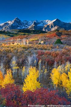San Juan Mountains Dallas Divide Colorado Ron Niebrugge http://www.my-photo-blog.com/