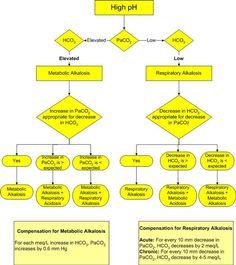 Alkalosis algorithm — Medlibes: Online Medical Library