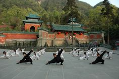 Tai chi  being demonstrated at the famous Wudang Temple, spiritual home of the Taoist arts.