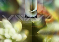 creation florale