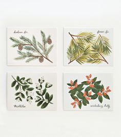 Winter Foliage Set from Rifle Paper Co.