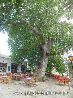 Village Vizitsa in Mount Pelion Beautiful Landscapes, Greece, Explore, Places, Greece Country, Lugares, Exploring