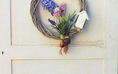 Wieniec, hiacynty, drewniany wieniec, wianek na drzwi, wielkanoc, dekoracja wielkanocna. Zobacz więcej na: https://www.homify.pl/katalogi-inspiracji/20678/wielkanocne-dekoracje-6-pieknych-propozycji