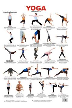 What are the benefits of yoga? How does the daily discipline of yoga affect the body, mind and spirit? What is the History of Yoga? Yoga is a holistic health and wellness activity that both relaxes… Yoga Chart, Yoga Poses Chart, Basic Yoga Poses, Yoga Poses For Beginners, Yoga Restaurativa, Sup Yoga, Yoga Meditation, Iyengar Yoga, Ashtanga Yoga Poses