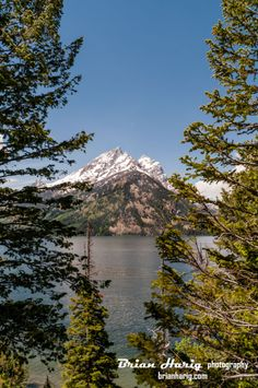 The #Grand #Tetons on #Jenny #Lake #Grand #Teton #National #Park #Wyoming. Available at www.brianharig.com #trees #water #brianharig #nature #assignment #travel #photographer #photography #photo #photos #photog #amazing #beauty #picsart #fine #art #travelboldly #natgeo