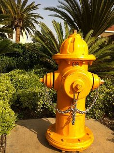 Las Vegas #yellow