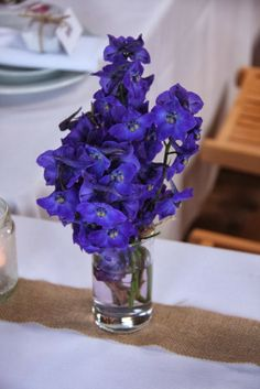 Posy of Blue Delphiniums