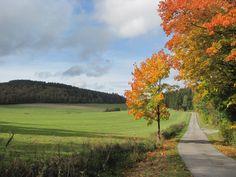 Weg naar de Dommelturm (Diemelsee - Sauerland - Duitsland)