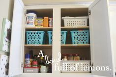 Day #12 ~ Getting Organized Challenge (The Spice Cabinet) | A Bowl Full of Lemons