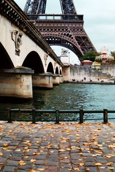 My sister's favorite place in the world, under the Eiffel Tower, River Seine, Paris, France