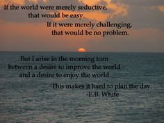 quote:If the world were merely seductive, that would be easy. - E.B. White  -OC
