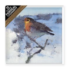 Buy Paper House Robin in Winter Snow Charity Christmas Cards, Pack of 10 Online at johnlewis.com