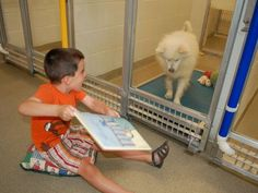 The Humane Society of Missouri is inviting children to read to their shelter dogs in an adorable - and mutually beneficial - program.