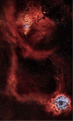 Rosette and Cone Nebula