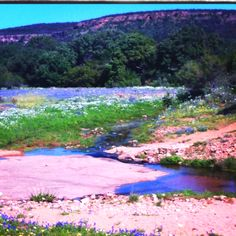 Texas Hill Country.