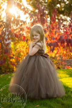 Chocolate Brown Tutu Dress with Flower Sash by littledreamersinc