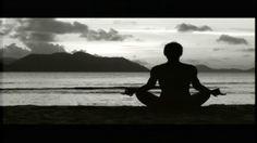 The Shadow Effect. A Movie Featuring: Debbie Ford, Marianne Williamson, Deepak Chopra, James Van Praagh, Mark Victor Hansen. Be uplifted by ...