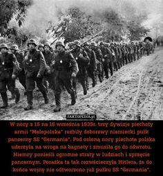 Luftwaffe, Semper Fidelis, Historical Photos, Homeland, Military, War, Humor, History, Memes