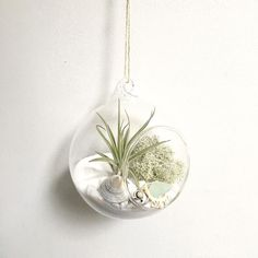 Happy Monday and I hope you've all had lovely weekends! A high point from mine was that my @etsy shop made its 400th sale and this was it: a white sand air plant garden. Starting my week feeling grateful and humbled Do share a high point from your weekend below pleasel